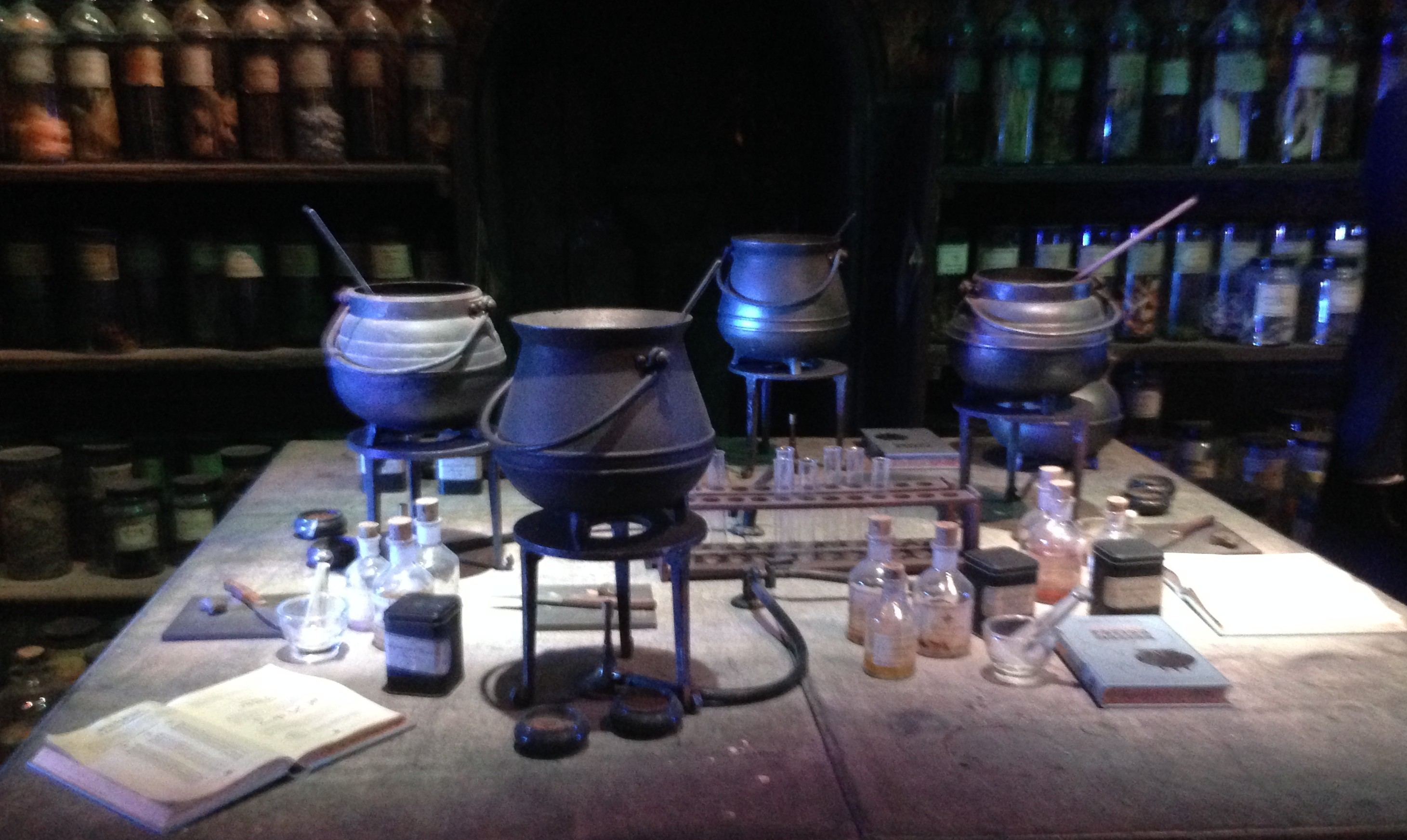 Einen Tag in Hogwarts