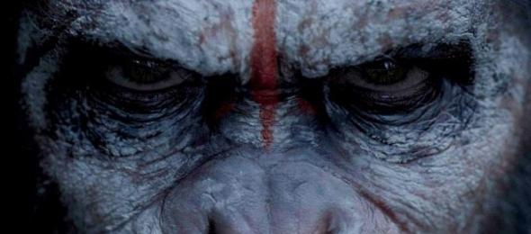 Planet der Affen – Alt gegen neu