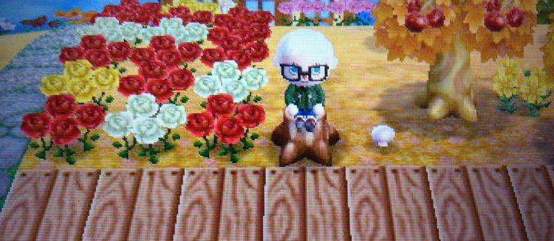 Das Mega-Update von Animal Crossing New Leaf